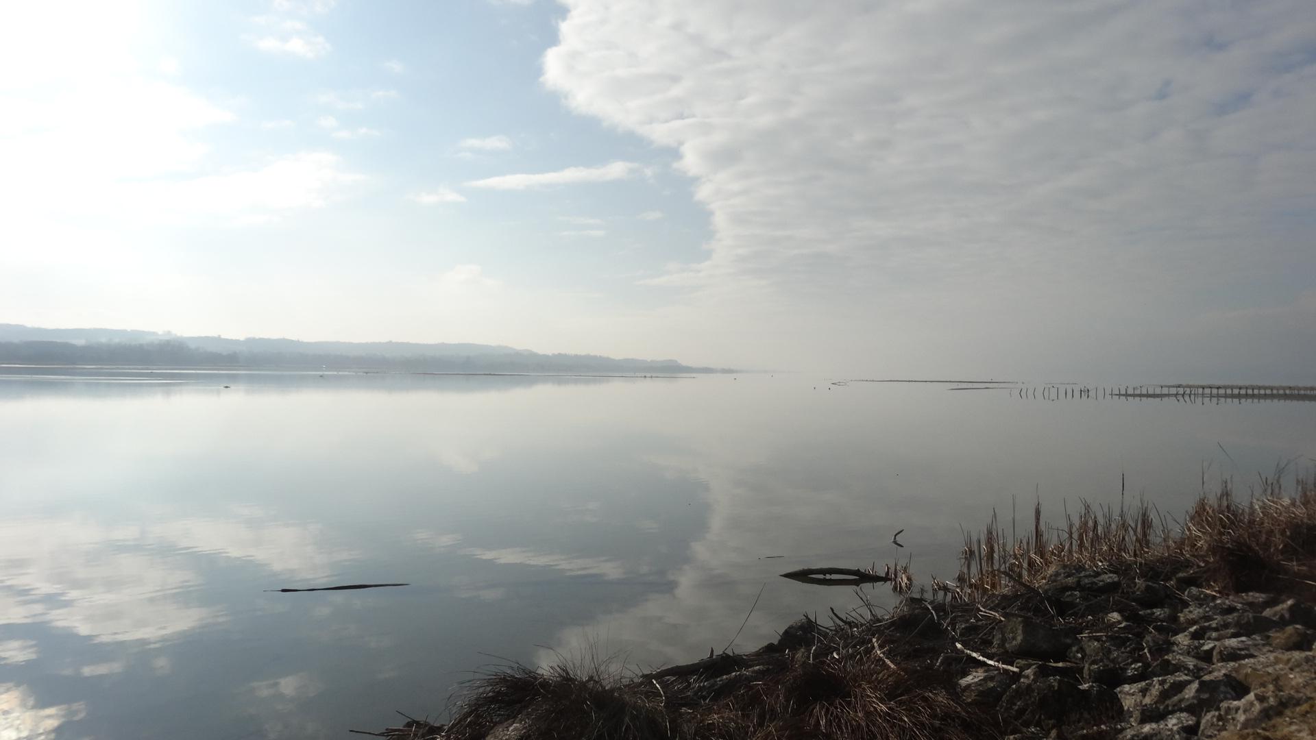 Balade à La Sauge, idéale pour observer les oiseaux migrateurs
